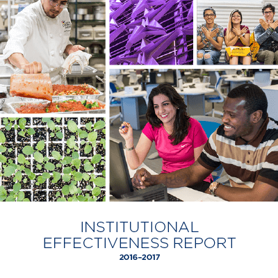 Institutional Effectiveness Report 2016-17 thumbnail