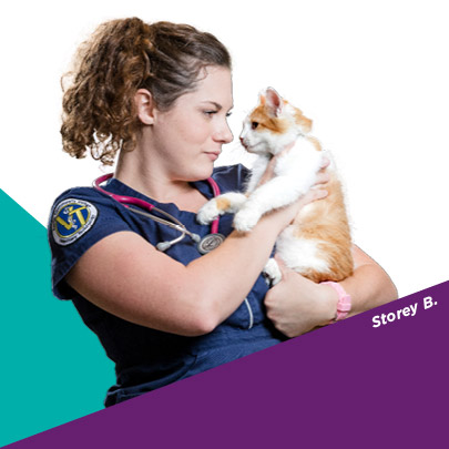 ACC Student Storey B. holds a cat during a Veterinary Technical class.